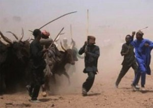 Fresh Attacks In Taraba and Benue Lead To Loss Of 47 Lives, Others Injured