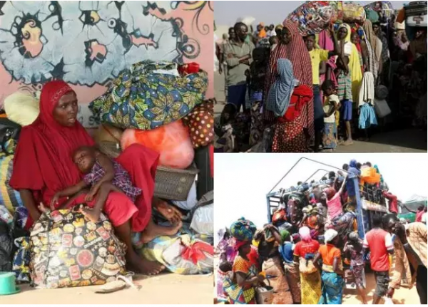 Cameroon Deports 517 Nigerians Including 313 Asylum Seekers