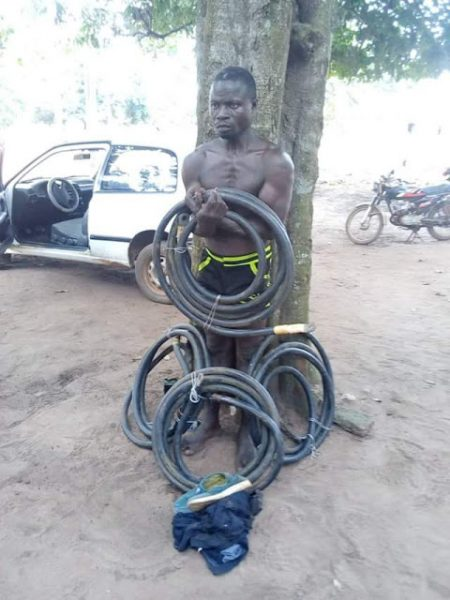 Image result for Transformer cable thief arrested in Lagos